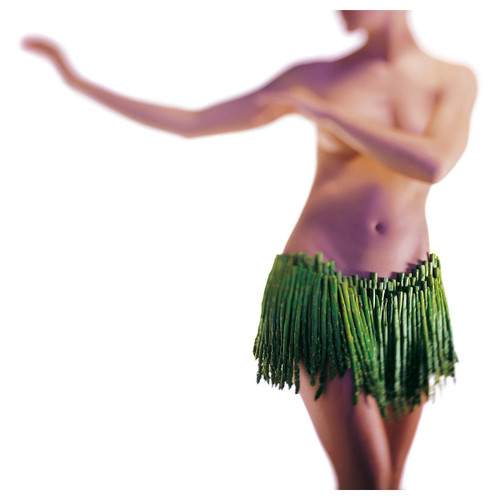 Erotic photography from The New Intercourses. A blurry image of a topless woman doing the hula with a skirt made of asparagus.